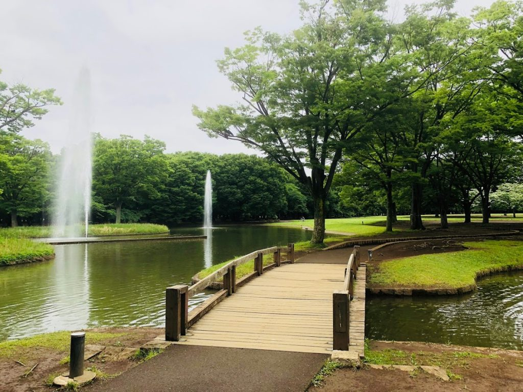 代々木公園の噴水と橋